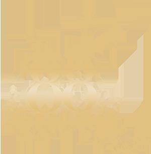 88 queen st logo